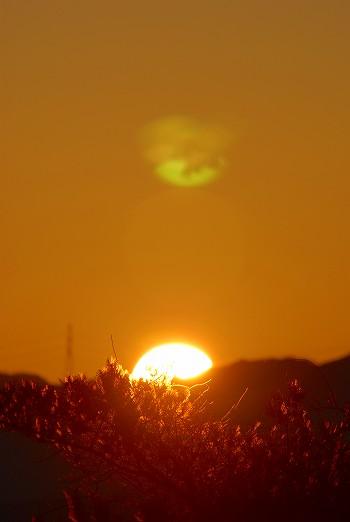 太陽が顔を出す・・