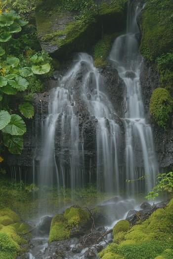 吐竜の滝の姿・・
